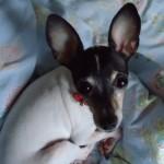 Profile picture of Yuka